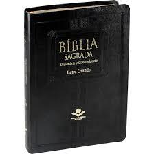 Biblia RA - Letra Grande - Dicionario e Concordancia - SBB