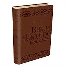 Bíblia de Estudo Colorida Luxo Grande Marrom