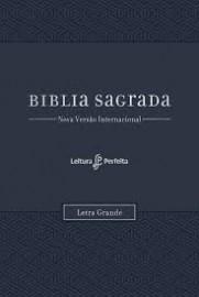 Biblia NVI Com Espaço Para Anotações Azul Letra Grande