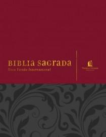 Bíblia NVI Com Espaço Para Anotações Vermelha Cinza