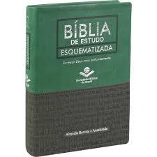 Bíblia de Estudo Esquematizada RA Luxo Grande Verde