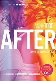 After - Vol 3 - Depois do Desencontro