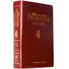 Biblia de Estudo Pentecostal Media Harpa Crista Luxo Vinho