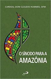 O Sínodo Para a Amazônia