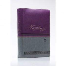 Bíblia de Estudo Arqueológica NVI Capa Luxo Vinho e Cinza