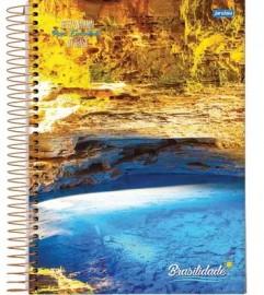 Caderno CD 12x1 240 Fls Brasilidade Jandaia