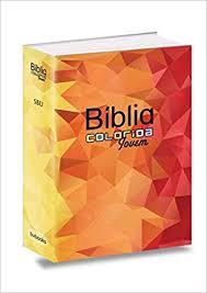 Bíblia Colorida Jovem - RA - SBU - Mosaico